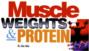 Muscle, Weights, Protein